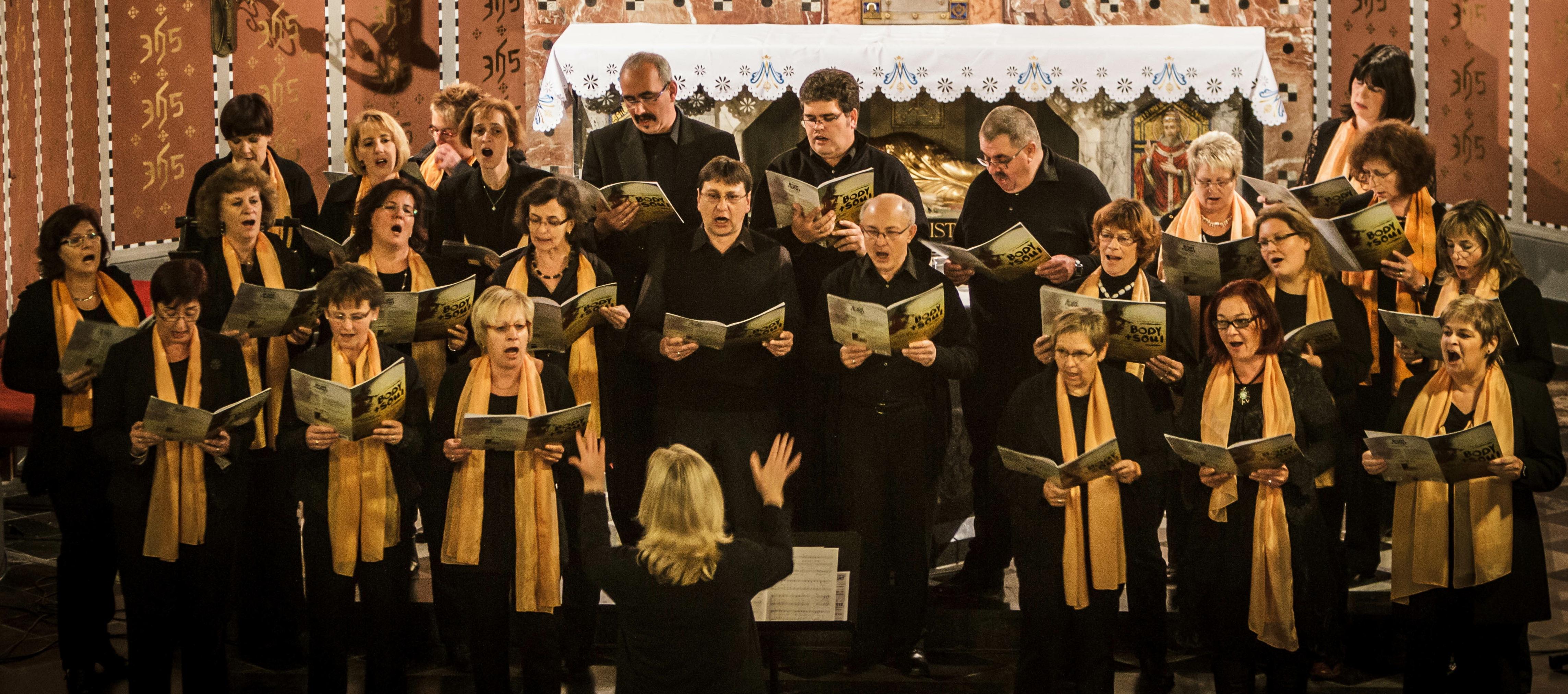 """Singen für eine gerechtere Welt –  Konzert des Chores """"Spirits of Ham-O-Nie"""" am 24. April 2016"""